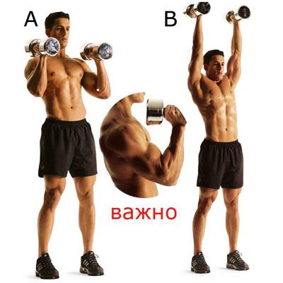 упражнения с гантелями для плеч для мужчин