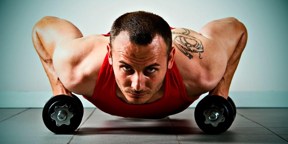 мышцы плеча упражнения с гантелями