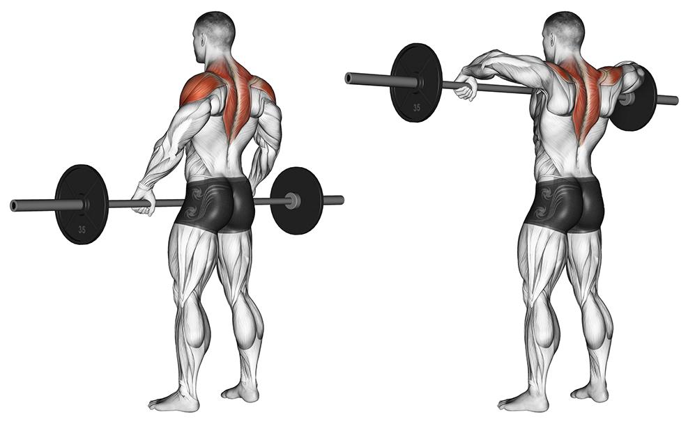 упражнения на ширину плечей