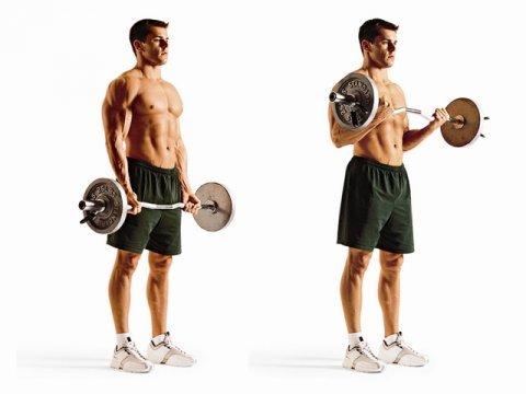 бицепс упражнения в тренажерном зале мужчине