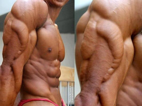 трицепс плеча упражнения