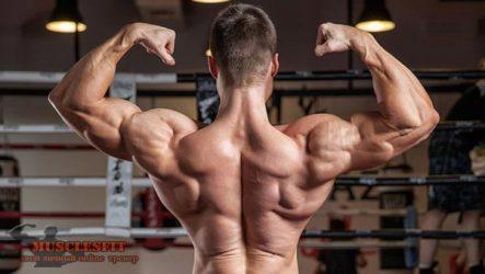 Упражнения на заднюю часть плеча