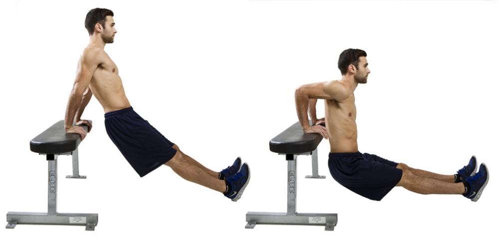 как правильно накачать мышцы рук
