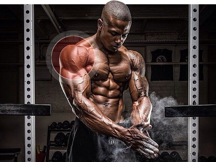 накачать мышцы плечей