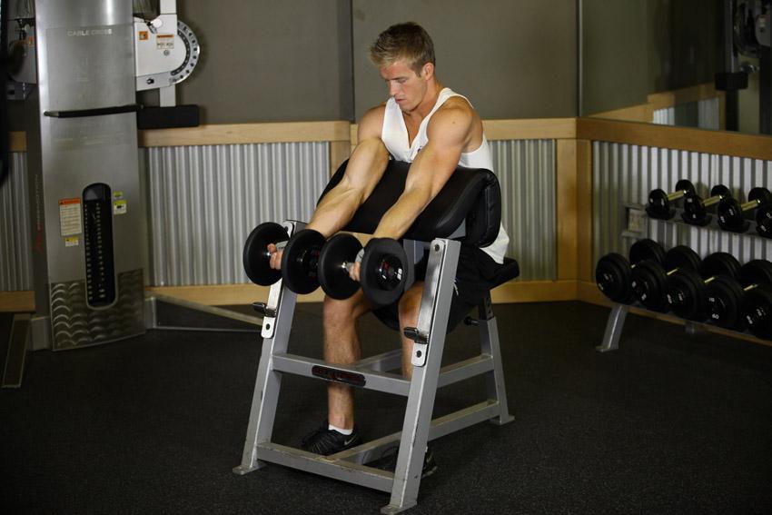 Топ упражнений на бицепс с гантелями и штангой для спортзала и домашних условий