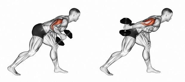 Качаем руки: тренировка на бицепс и трицепс