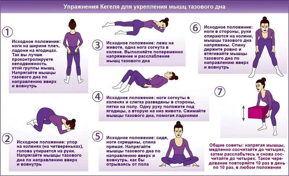 Тренировка мышц тазового дна – пособие для женщин