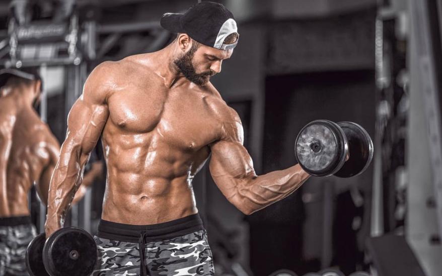 Программа тренировок на рост массы мышц бицепса руки