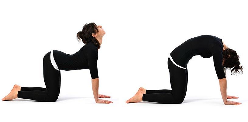 Комплекс упражнений для расслабления спины и шеи после рабочего дня