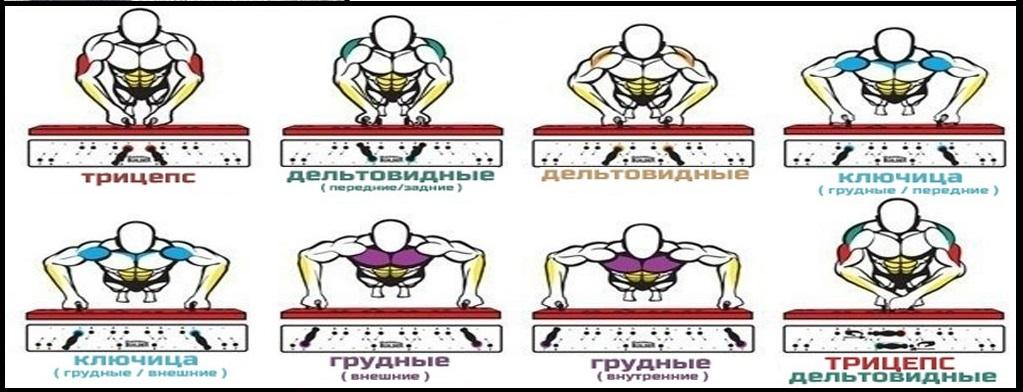 Как отжиманиями от пола накачать плечи