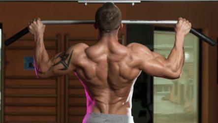 Как накачать плечи и грудные мышцы: эффективная программа