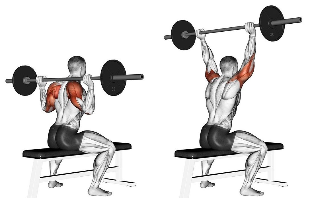какими упражнениями накачать плечи
