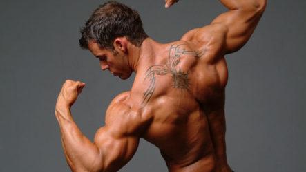 Как правильно и быстро накачать плечи в тренажерном зале: лучшие тренировки