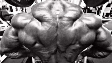 Как накачать широкую спину и шею: эффективные тренировки