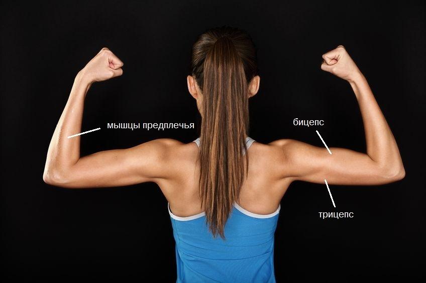 как накачать руки женщине в домашних условиях