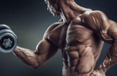 Как накачать бицепс гантелями дома: комплекс упражнений