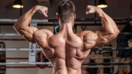 5 лучших упражнений для мышц трапеции